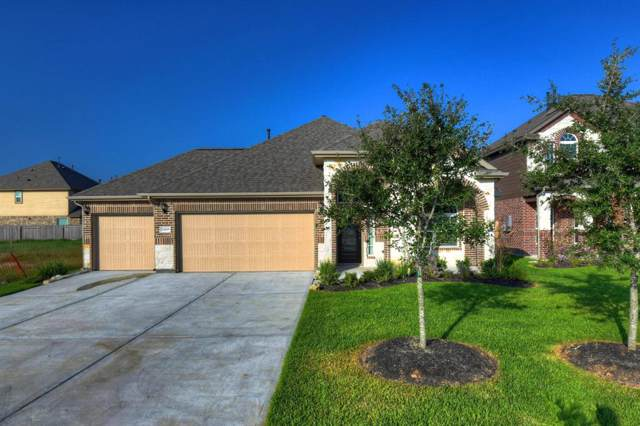 21619 Tea Tree Olive Place, Porter, TX 77365 (MLS #36381207) :: The Home Branch
