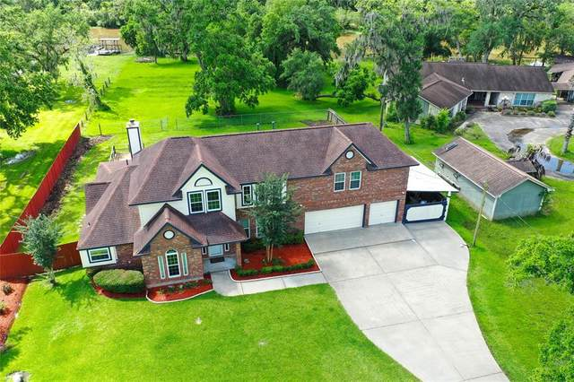 208 Fawn Trail, Lake Jackson, TX 77566 (MLS #37015849) :: The SOLD by George Team