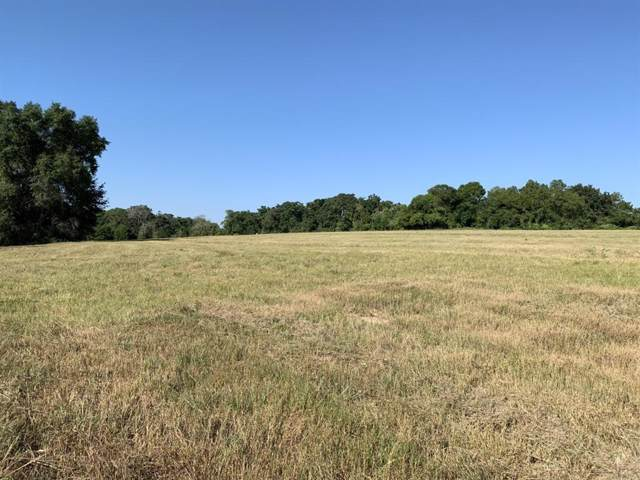 4117 Eli Road, Bellville, TX 77418 (MLS #37602824) :: Connect Realty