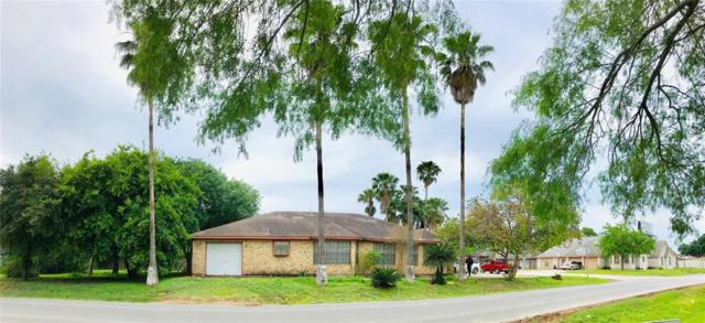 1305 Marla Drive, Palmview, TX 78572 (MLS #38243189) :: Texas Home Shop Realty