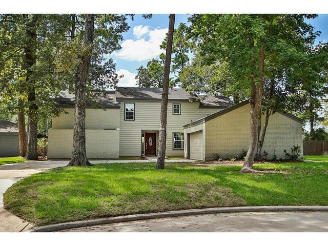 23015 Squirrel Tree Street, Spring, TX 77389 (MLS #40280834) :: Giorgi Real Estate Group