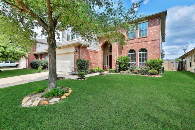 25218 Ibris Ranch Drive, Katy, TX 77494 (MLS #40726530) :: Magnolia Realty