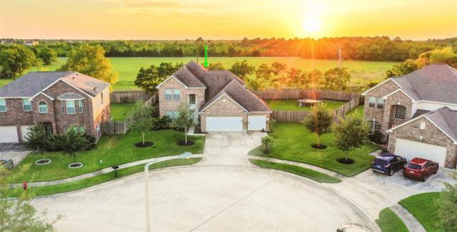 100 Avery Springs Lane, Dickinson, TX 77539 (MLS #41338393) :: JL Realty Team at Coldwell Banker, United