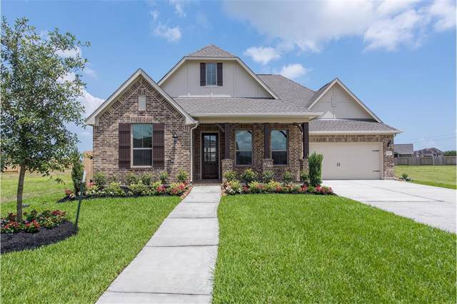 3205 Rose Creek Lane, League City, TX 77573 (MLS #41955199) :: The Bly Team