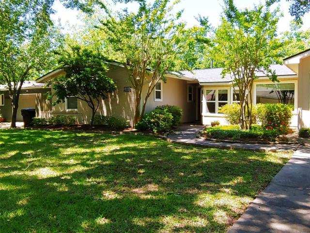 11010 Waxwing Street, Houston, TX 77035 (MLS #42401987) :: Fairwater Westmont Real Estate