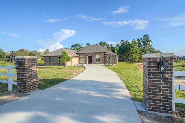 8858 Grand Lake Estates Drive, Montgomery, TX 77316 (MLS #42529256) :: The Heyl Group at Keller Williams