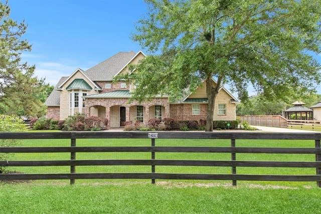 28003 Willowgreen Street, Katy, TX 77494 (MLS #42648134) :: The SOLD by George Team