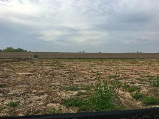 1406 Paradise Found Drive, Iowa Colony, TX 77583 (MLS #43265705) :: NewHomePrograms.com LLC