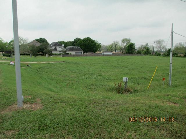 0 Raintree Drive, Missouri City, TX 77459 (MLS #43373646) :: Texas Home Shop Realty