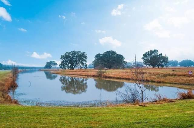 1638 Lakeland Circle, Rosharon, TX 77583 (MLS #43574420) :: The Jill Smith Team