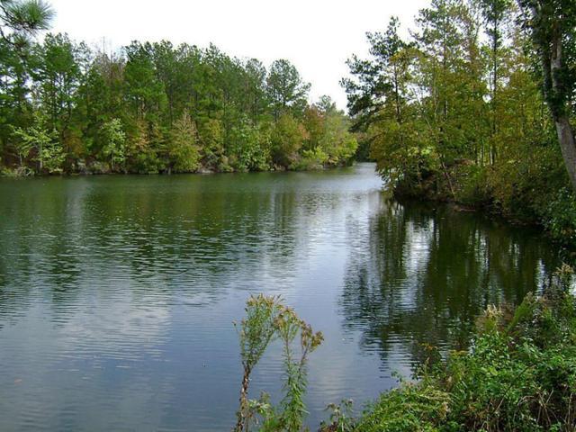 47 Deer Ridge, Romayor, TX 77327 (MLS #44024492) :: TEXdot Realtors, Inc.