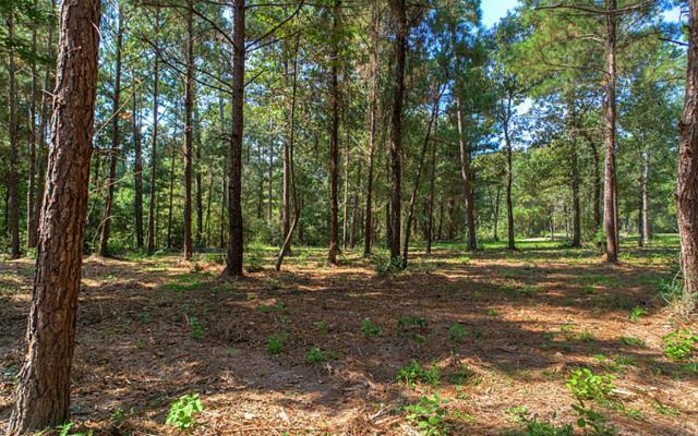 140 Dedication Trail, Huntsville, TX 77340 (MLS #44214002) :: Carrington Real Estate Services