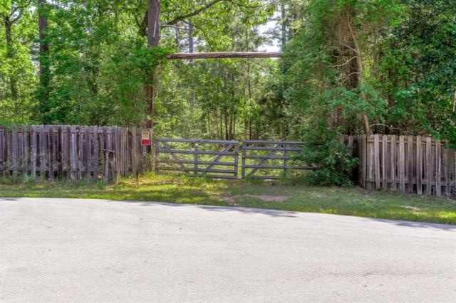 40920 Sandy Hill Road, Montgomery, TX 77316 (MLS #44454350) :: Texas Home Shop Realty