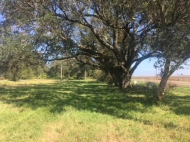 11351 S Gulfway Drive, Sabine Pass, TX 77655 (MLS #44819638) :: Michele Harmon Team