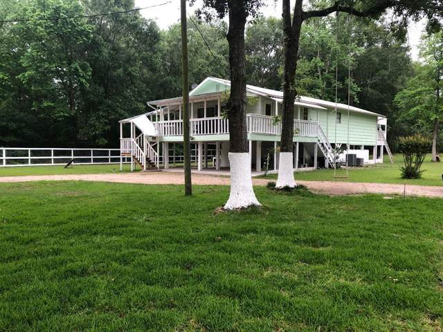 49 County Road 3184A, Cleveland, TX 77327 (MLS #44977464) :: All Cities USA Realty