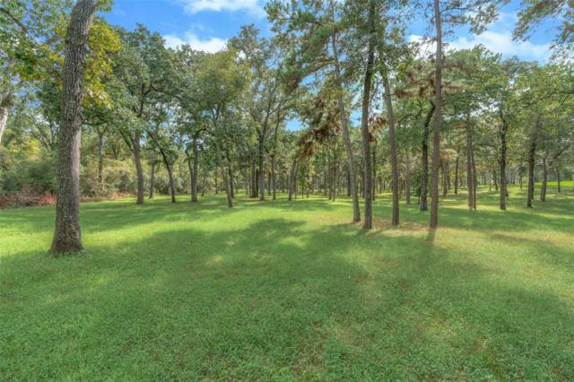 10257 Crown Ranch Boulevard, Montgomery, TX 77316 (MLS #45093250) :: The SOLD by George Team
