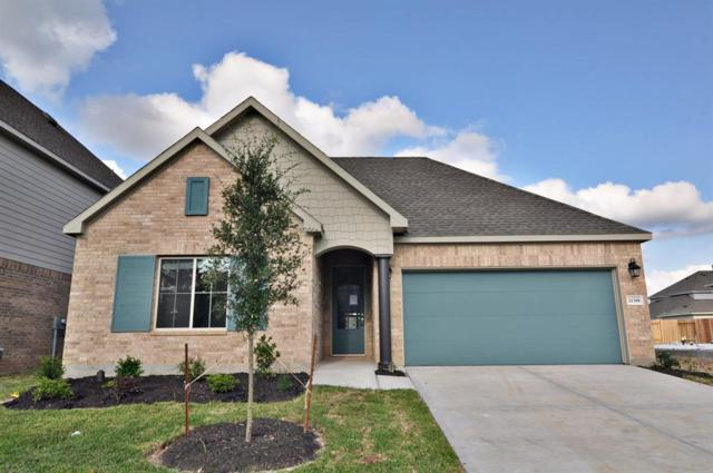 21308 Somerset Shores Crossing Court, Kingwood, TX 77339 (MLS #45674345) :: Connect Realty