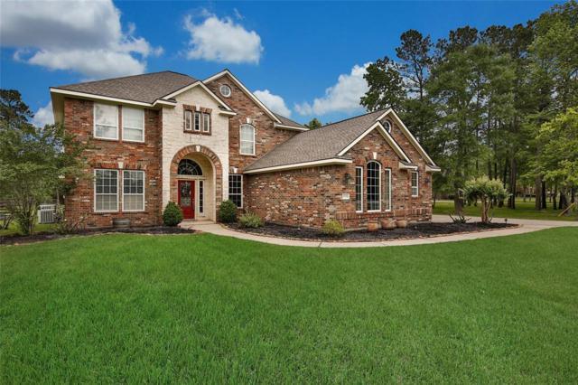 11834 Water Oak Court, Magnolia, TX 77354 (MLS #45738052) :: Christy Buck Team