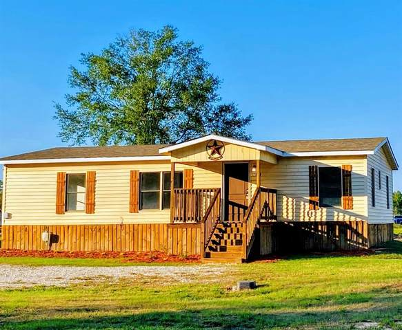 17863 Old Highway 105 E, Conroe, TX 77306 (MLS #46897965) :: The SOLD by George Team