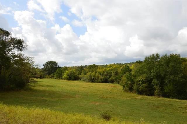 13526 County Road 407 - 50 Acres, Navasota, TX 77868 (MLS #4698735) :: The Property Guys