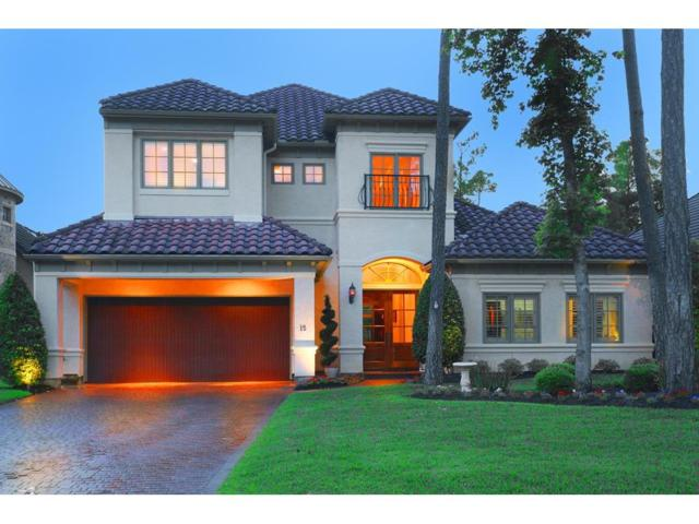 15 Serenade Pines Place, The Woodlands, TX 77382 (MLS #47679660) :: Giorgi Real Estate Group