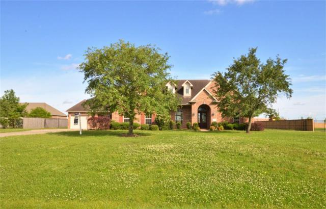 3859 Summer Manor Drive, League City, TX 77573 (MLS #48058945) :: The Bly Team