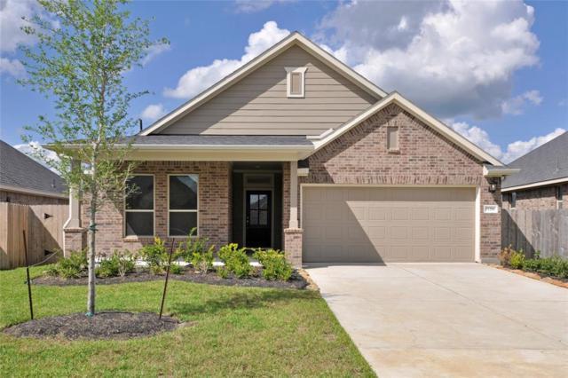 31206 Gulf Cypress Lane, Hockley, TX 77447 (MLS #48682959) :: Texas Home Shop Realty