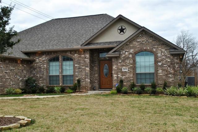 203 Poppy Street, Lake Jackson, TX 77566 (MLS #48704235) :: Connect Realty