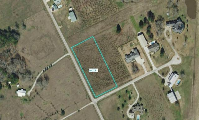 Lot 13 Longhorn Loop Court, New Waverly, TX 77358 (MLS #48782261) :: Ellison Real Estate Team