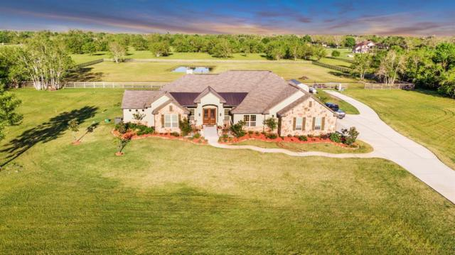 16611 Suncreek Ranch, Rosharon, TX 77583 (MLS #48846658) :: The Queen Team