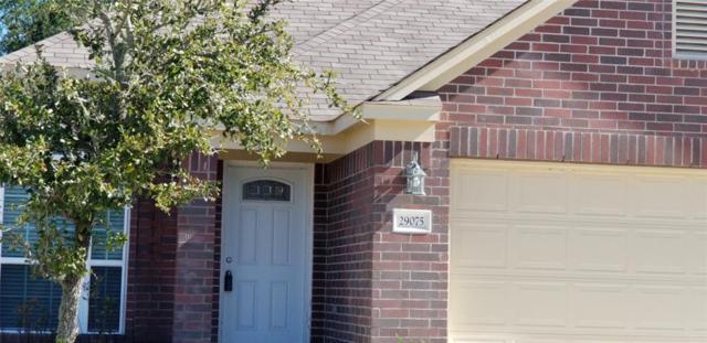 29075 Birch Green Way, Spring, TX 77386 (MLS #48902098) :: Texas Home Shop Realty
