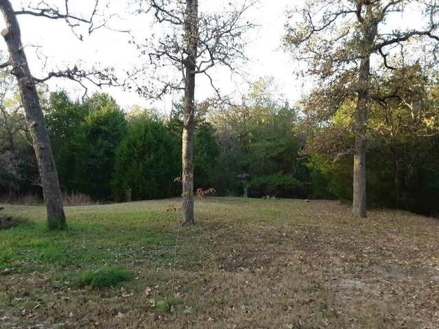 1664 Big Berry Road, Somerville, TX 77879 (MLS #49380455) :: My BCS Home Real Estate Group