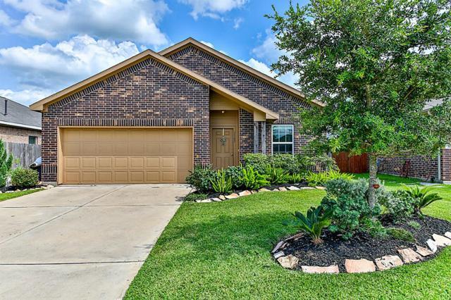 3105 Braepark Court, Dickinson, TX 77539 (MLS #49917534) :: Texas Home Shop Realty