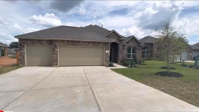 10535 Amador Peak Drive, Rosharon, TX 77583 (MLS #50276697) :: The Wendy Sherman Team