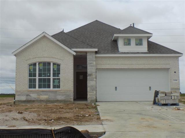 2739 Blue Mist, Fulshear, TX 77423 (MLS #50979718) :: The Heyl Group at Keller Williams