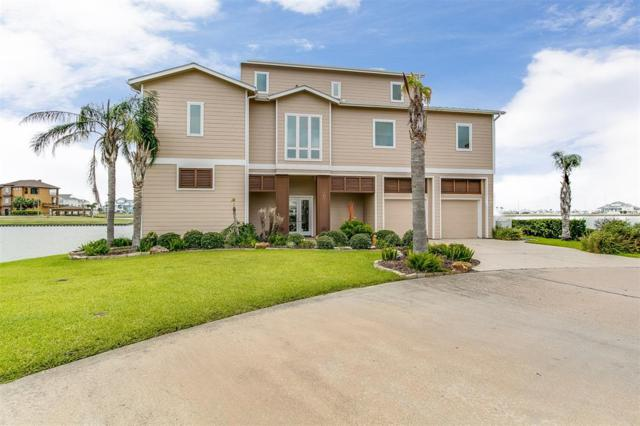 22 Loggerhead, Hitchcock, TX 77563 (MLS #52380121) :: The SOLD by George Team