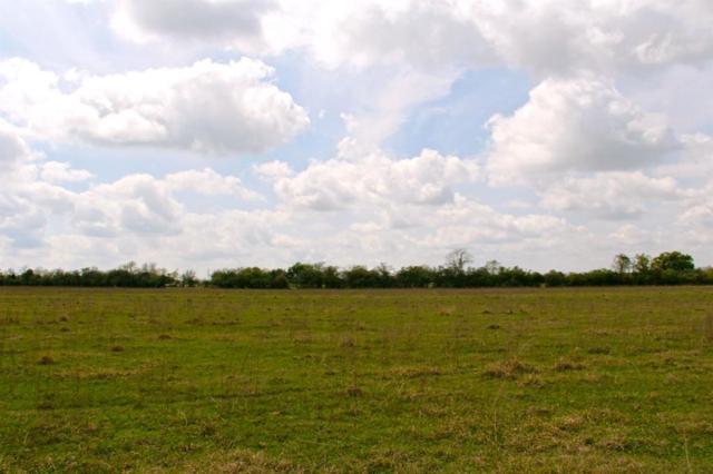 23321 Kickapoo Road, Waller, TX 77484 (MLS #53258612) :: Green Residential