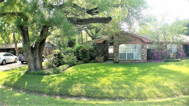 8818 Cadawac Road, Houston, TX 77074 (MLS #53569245) :: Texas Home Shop Realty