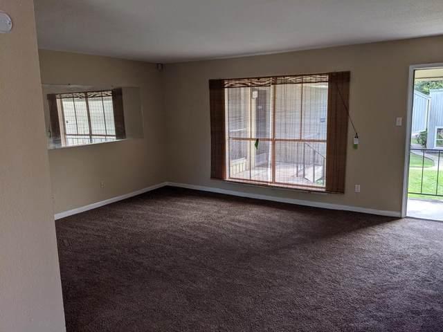 5625 Antoine Drive #1402, Houston, TX 77091 (MLS #53865303) :: Connect Realty