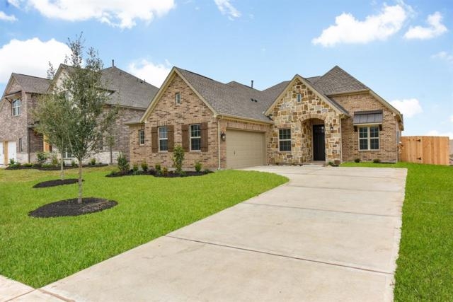 10118 Whitney Reach Drive, Rosharon, TX 77583 (MLS #53958084) :: Texas Home Shop Realty