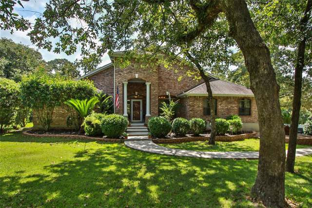 11519 Royal Hill Court, Montgomery, TX 77316 (MLS #54333873) :: The Jennifer Wauhob Team