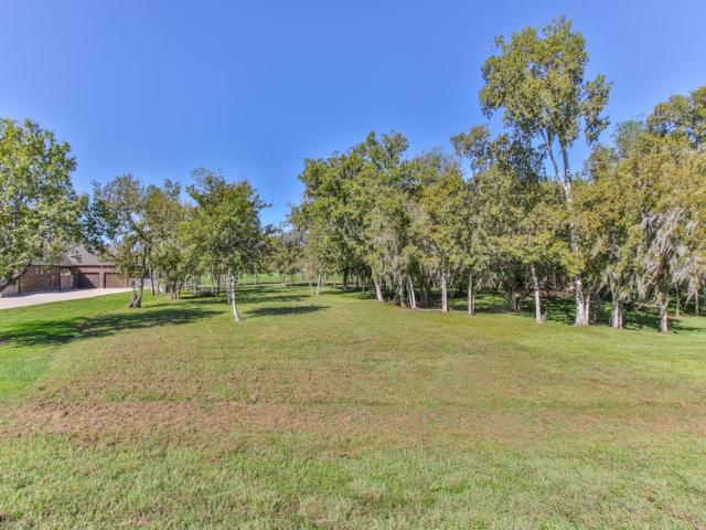 3311 Wellspring Lake Drive, Fulshear, TX 77441 (MLS #54554074) :: Krueger Real Estate