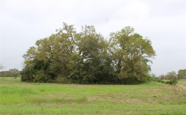 17727 Cedar Hill Drive, Rosharon, TX 77583 (MLS #54908919) :: Texas Home Shop Realty
