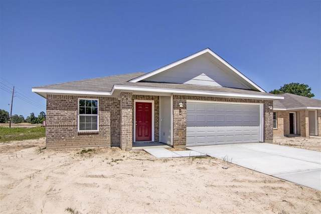 23338 Sandpiper Trail, Spring, TX 77373 (MLS #58064432) :: The SOLD by George Team