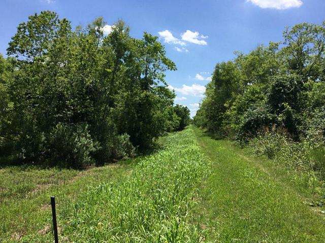 0 Highway 35, Angleton, TX 77515 (MLS #58230834) :: Texas Home Shop Realty