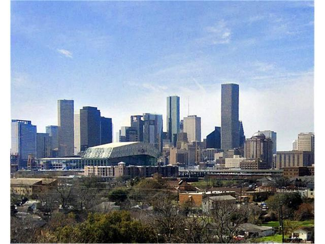 127 N Kendall Street, Houston, TX 77003 (MLS #58852957) :: Texas Home Shop Realty