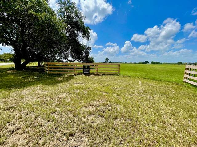 671 Oil Field Road, Bellville, TX 77418 (MLS #61223953) :: The Wendy Sherman Team