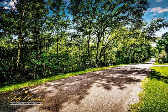 Lot 23 Fultz Road, Conroe, TX 77304 (MLS #6245020) :: The Freund Group