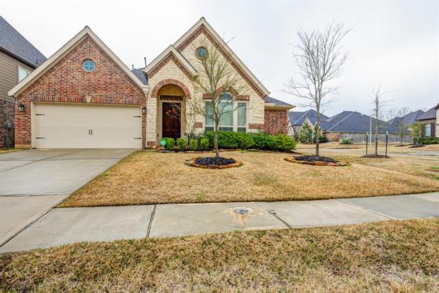 163 Deerfield Meadow Drive, Conroe, TX 77384 (MLS #62640515) :: Christy Buck Team