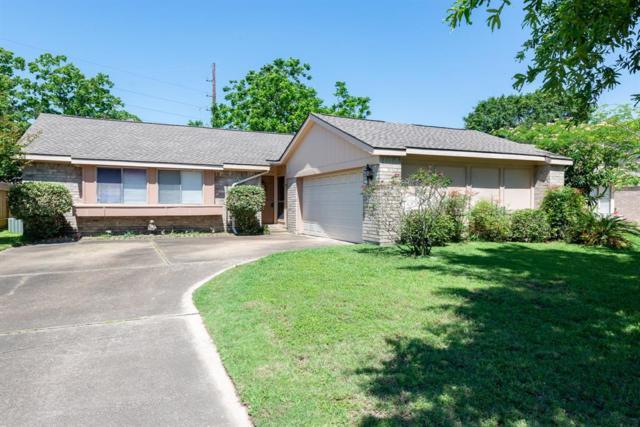 1246 Summer Park Lane, Katy, TX 77450 (MLS #63096740) :: Connect Realty